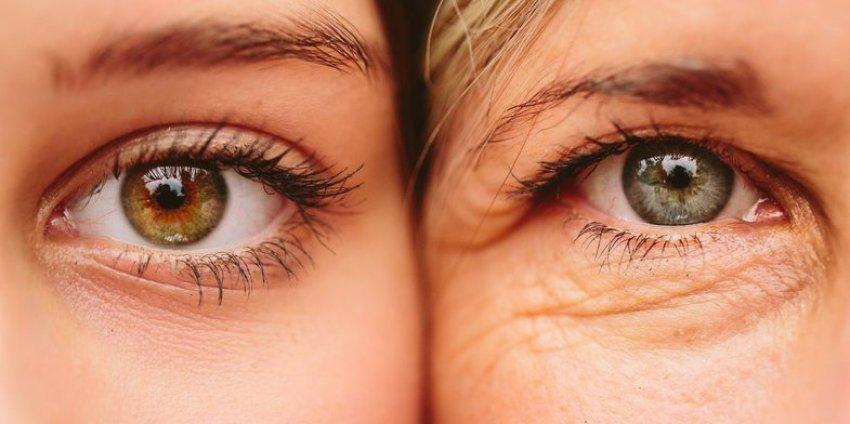 Rrudhat e syve